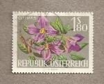 Sellos de Europa - Austria -  Flor Clematis