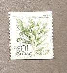 Stamps Sweden -  Acer platanoides