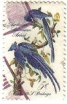 Sellos de America - Estados Unidos -  USA 1963 Scott 1241 Sello Columbia Jays Pajaros Usado