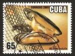 Sellos de America - Cuba -  fauna marina, mejillon