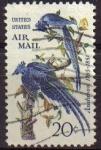 Stamps United States -  USA 1967 Scott C71 Sello Correo Aereo Fauna Pájaros Aves usado