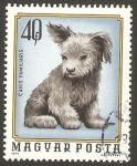 Stamps : Europe : Hungary :  2404 - Animal doméstico, cachorro