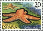 Stamps Spain -  ESPAÑA 1979 2534 Sello Nuevo Fauna Invertebrados Estrella de Mar 20p