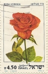 Stamps Asia - Israel -  ROSA HYBRIDA