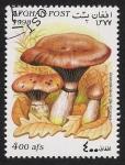 Stamps Asia - Afghanistan -  SETAS-HONGOS: 1.100.021,00-Gonfidius glutinosus