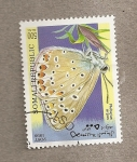 Sellos del Mundo : Africa : Somalia : Mariposa Plebejus argus