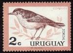 Sellos del Mundo : America : Uruguay : pajaros de Uruguay ··ZORZAL
