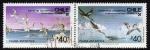Sellos de America - Chile -  Gaviotin y Cormoran Antartico