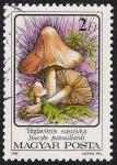 Sellos de Europa - Hungría -  SETAS-HONGOS: 1.164.013,04-Inocybe patouillardii -Phil.53461-Dm.986.74-Y&T.3083-Mch.3873-Sc.3048