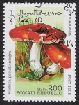Sellos del Mundo : Africa : Somalia : SETAS:229.002(3)-Russula pseudointegra