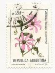 Sellos de America - Argentina -  Virreina