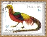 Sellos del Mundo : Asia : Emiratos_Árabes_Unidos : FUJEIRA, Aves