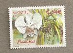 Sellos del Mundo : Africa : Mayotte : Phanelopsis