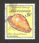 Sellos del Mundo : Oceania : Micronesia : concha, cipraea guttata
