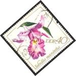 Sellos de Europa - Alemania -  Orquídea sobralia macrantha