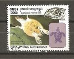 Sellos de Asia - Camboya -  Tortugas.