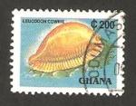 Sellos del Mundo : Africa : Ghana : concha leucodon cowrie