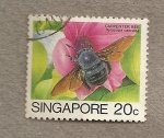 Sellos del Mundo : Asia : Singapur : Abeja carpintera