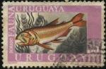 Sellos de America - Uruguay -  Fauna ictícola. Pez de agua dulce DORADO.