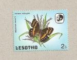Sellos del Mundo : Africa : Lesotho : Mariposa Meneris tulbaghia