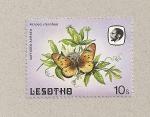 Sellos del Mundo : Africa : Lesotho : Mariposa Acraea stenobea