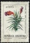 Sellos de America - Argentina -  Flor del Clavel del aire. - Tillandsia aeranthos -