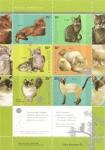 Sellos del Mundo : America : Argentina :  Gatos