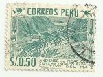 Sellos del Mundo : America : Perú : Andenes de Pisac, Cusco: sistema incaico para el cultivo del maíz