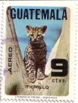 Sellos de America - Guatemala -  Conservación Fauna Salvaje