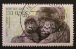 Sellos de Europa - Alemania -  gorilas