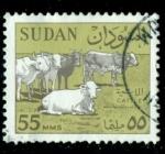 Sellos del Mundo : Africa : Sudán :  Cattle