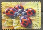 Sellos de Oceania - Australia -  vedalia ladybird