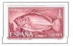 Sellos del Mundo : Europa : España :  SAHARA EDIFIL 224 (1 SELLO)