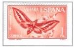 Sellos de Europa - España -  SAHARA EDIFIL 227 (12 SELLOS )INTERCAMBIO