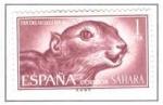 Sellos del Mundo : Europa : España :  SAHARA EDIFIL 237 (8 SELLOS)INTERCAMBIO