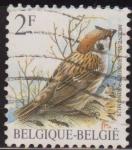 Sellos de Europa - Bélgica -  Belgica 1985 Scott 1218 Sello º Aves Oiseaux Moineau Friquet Ringmus 2fr Belgique Belgium
