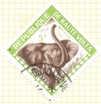 Sellos del Mundo : Africa : Burkina_Faso : ALTO VOLGA - Elefante