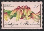 Sellos de America - Antigua y Barbuda -  FLORES: 6.105.026,00-Kalanchoe pinnata