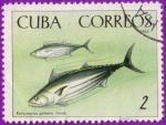 Sellos de America - Cuba -  Fauna de la cienaga de Zapata