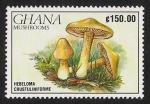 Sellos de Africa - Ghana -  SETAS-HONGOS: 1.154.025,00-Hebeloma crustuliniforme