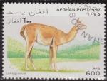 Sellos de Asia - Afganistán -  Afganistan 1997 Scott 1392 Sello º Fauna Lama Guanicoe 600AFS Afghan Poste