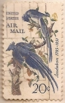 Sellos del Mundo : America : Estados_Unidos : Audubon