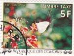 Sellos de Africa - Comores -  flores