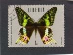 Sellos de Africa - Liberia -  mariposa