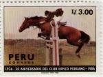 Sellos de America - Perú -  Club Hipico Peruano