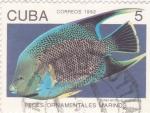 Sellos de America - Cuba -  peces ornamentales marinos