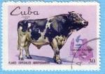 Sellos de America - Cuba -  Ganado Vacuno