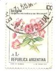 Sellos de America - Argentina -  Begonia
