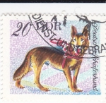 Sellos de Europa - Alemania -  Perros de raza -SCHAFERHUND