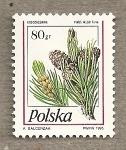 Sellos de Europa - Polonia -  Piña